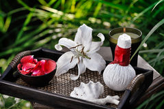 Spa in garden Stock Image