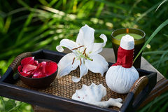 Spa in garden royalty free stock image