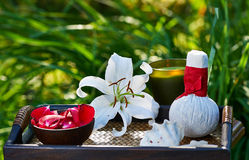 Spa in garden Royalty Free Stock Photography