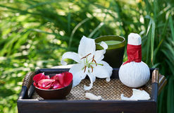 Spa in garden Royalty Free Stock Photos