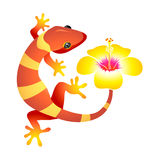 Spa gecko. Little leopard gecko with hibiscus flower as spa symbol Royalty Free Stock Photography