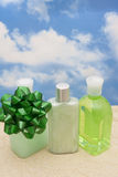 Spa Gift royalty free stock photography