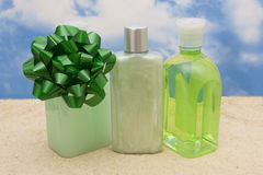 Spa Gift Stock Image