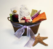 Spa Gift Basket Royalty Free Stock Images