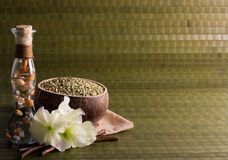 Spa on green bamboo Stock Photos