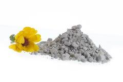 SPA Green clay powder Stock Photography