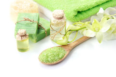Spa. Green spa isolated on white background with copyspace Royalty Free Stock Images