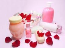 Spa hair mask tonic essences liquid soap Stock Photography