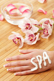 Spa hands Royalty Free Stock Photography