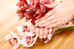 Spa hands Royalty Free Stock Photo
