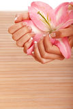 Spa hands Stock Images