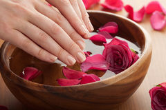 Spa for hands Royalty Free Stock Photos