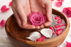 Spa for hands Stock Photography