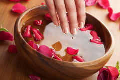 Spa for hands Stock Image