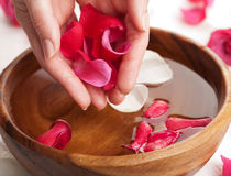 Spa for hands Stock Photos