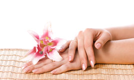 Spa hands Stock Photography