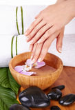 Hands Spa Royalty Free Stock Photography