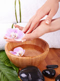 Spa for hands Royalty Free Stock Photo