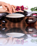 Spa for hands with orchids and bowl of milk Stock Image