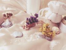 Spa hemma Royaltyfria Bilder
