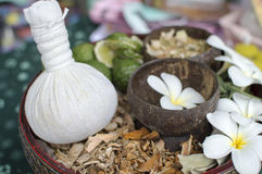 Spa herbal compressing ball with herbs Stock Photos