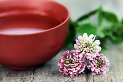 Spa with herbal flowers close up. Spa with pink herbal flowers close up Stock Images