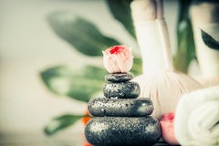 Spa hot stone massage concept with flowers and palm leaves Royalty Free Stock Photo