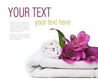 Spa and hygiene concept, isolated, ready template Stock Photos