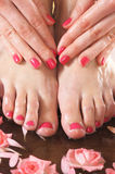 Spa image of female feet and flowers. Spa background with a beautiful legs, flowers, petals and ceramic bowl Stock Photos