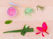 The spa ingredient sea salt and herb Stock Images