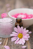 Spa ingredients Royalty Free Stock Photo