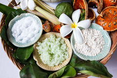 Spa ingredients with herbs Royalty Free Stock Photo