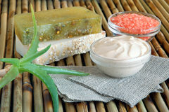 Spa Ingredients With Aloe Vera Stock Image