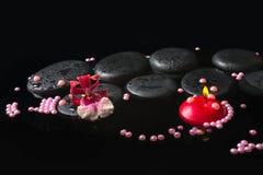 Spa inställning av orkidécambriablomman på zenstenar med droppar Arkivbilder