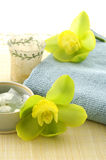 spa item Royalty Free Stock Photography