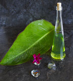 Spa items. Bottle and banana leaf Stock Photos