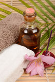 Spa items. Things for use in a spa Stock Image