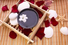Spa items on bamboo mat. Spa items, bowl and seashells on bamboo mat Stock Photography