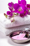 Spa items, bath salt. Royalty Free Stock Images