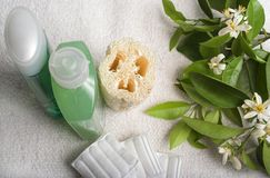 Spa items with orange blossoms. Skin and bodycare items with fresh orange blossoms stock photo