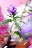 spa kolorze lila Obrazy Royalty Free