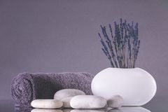 Spa. Lavender flowers stand in a white vase on a gray background. Pebbles and a towel rolled into a roll royalty free stock photo