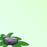 Spa leaves stone background. To add text Stock Photo