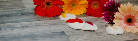 Spa life. Accessories for skin care, freesia, sponge for body and towels on a wooden table close-up. stock image