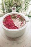 Spa luxury bath. Luxury hotel bath with tropical flowers, spa decoration stock image
