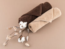 Spa Luxury Towels and Cotton Branch Royalty Free Stock Photography