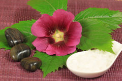 Spa with mallow flower. Spa treatment with mallow flower, sea salt and green leaf Royalty Free Stock Photography