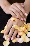 Spa manicure. Woman's hands covered with rose petals at the spa Royalty Free Stock Photography