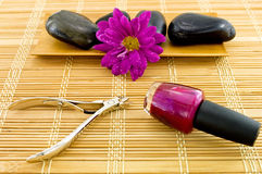 Spa Manicure Scene Royalty Free Stock Photos