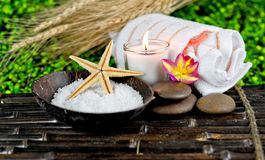 spa masaż Fotografia Royalty Free
